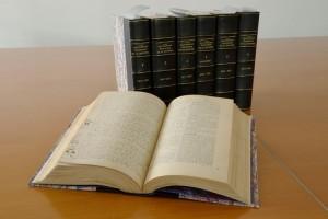 Dictionnaire Angot (1)