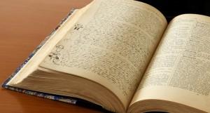 Dictionnaire Angot (3)